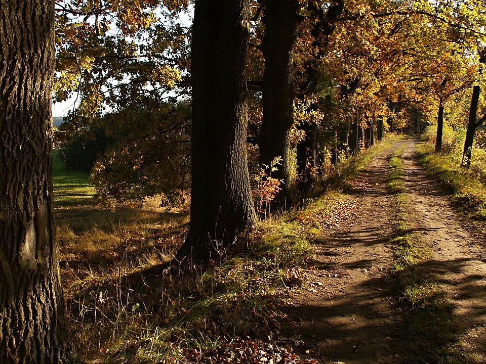 cesta_do_přírody