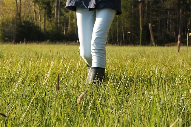 procházka v trávě
